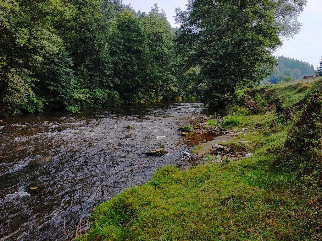 pstruhová řeka a česká nymfa