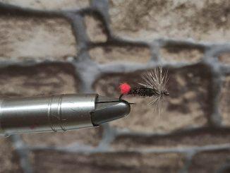 Red Tag alias rudořitka je základní vzor mušky. Funguje téměř všude a vždy, přičemž uvázat ji zvládne i začátečník.