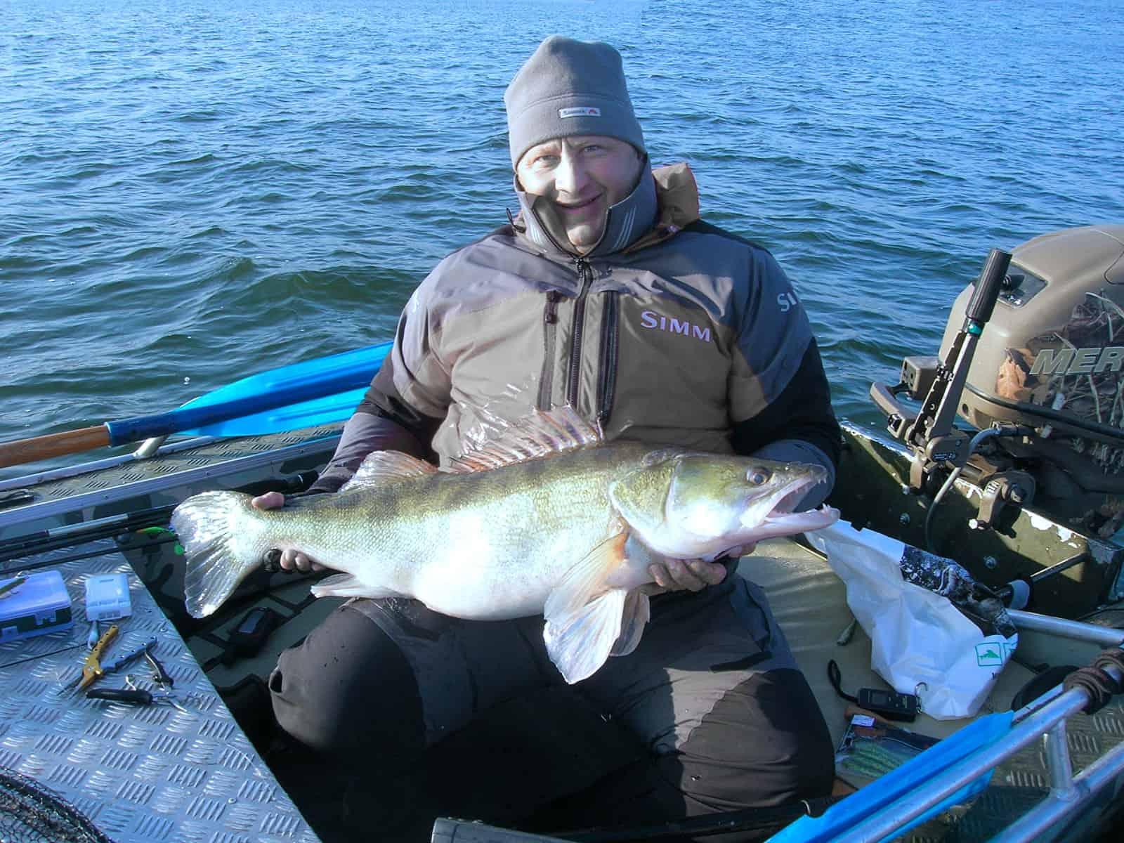 Candát je legendární ryba z Lipna
