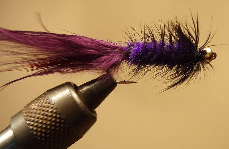Wooly Bugger s fialovým tělíčkem