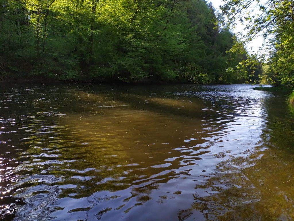 Suchá muška se odehrává na pstruhových řekách