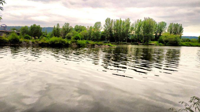 Vltava 7 - začátek revíru na soutoku Vltavy a Berounky