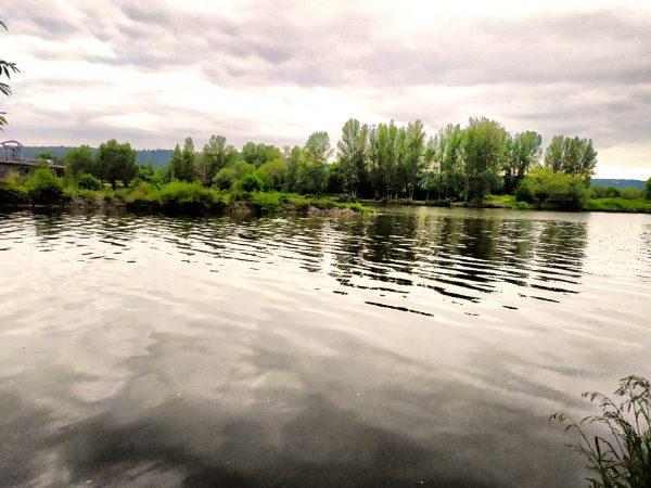 Vltava 7 - začátek revíru. Jaká je cena rybářského lístku?na soutoku Vltavy a Berounky