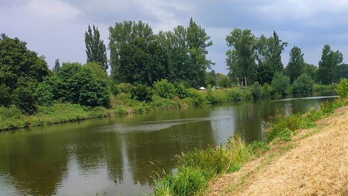 Řeka Labe v Hradci Králové