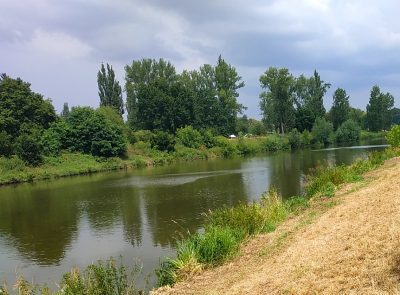Řeka Labe v Hradci Králové, rybářský lístek-