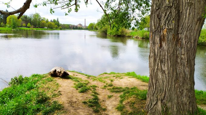 rybaření na Jizeře u soutoku s Labem