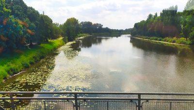 Labe je řeka plná štik, candátů i jiných ryb