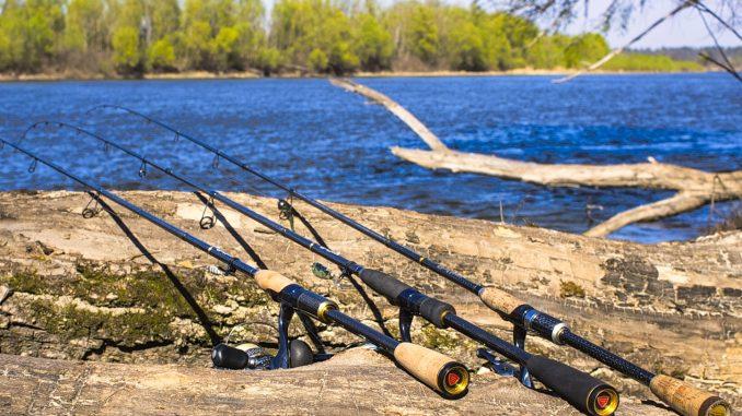 V Čechách existuje několik způsobů jak začít rybařit