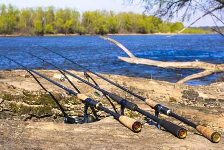 V Čechách existuje několik způsobů jak začít rybařit. velikost navijáku na přívlač