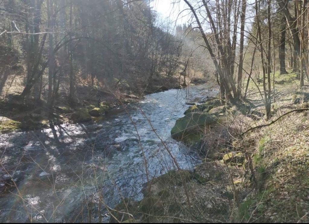 Pruty na pstruhy je potřeba vybírat i s ohledem na sílu řeky
