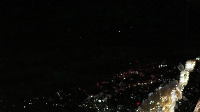 Lov kaprů v noci